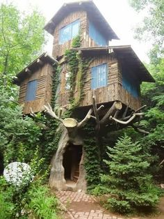 Some guys never grow up! Amazing treehouse