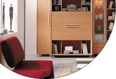 Vertically Synchronized Sliding Cabinet Doors  www.modernmillworkinnovations.com    EKU AG - EKU-LIBRA 20 H (IS/FS)