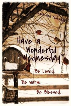 HAVE A WONDERFUL WEDNESDAY: BE LOVED, BE WARM, BE BLESSED !!!!