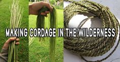 Making Cordage in the Wilderness. Making cordage from common plants is a forgotten skill. This skill is being kept alive thanks to survivalists and bushcraft enthusiasts. Most people rely on paracords and all sort of modern cordage when it comes to camping. However, it is quite surprising the simplicity with which cordage can be manufactured in nature.