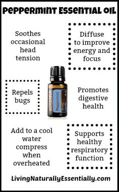 Lavender essential oil - Dozens of practical uses around the home! Natural cleaning and sleep support. Doterra Essential Oils, Young Living Essential Oils, Essential Oil Blends, Burn Relief, Sleep Hairstyles, Doterra Peppermint, Ovarian Cyst, Hand Lotion, Natural Cleaning Products