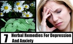 7 Herbal Remedies For Depression And Anxiety
