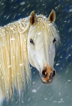 White Horse by Sue Warner.