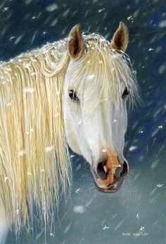 cheval sous la neige (perso c trop beau)