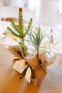 2013 - this would be an adorable holiday party favor/table decoration