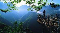 Área protegida Place:Madeira Photo:Madeira