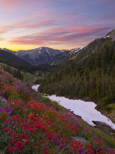 Badger Valley Sunrise, Olympic National Park, Washington, USA Photographic Print