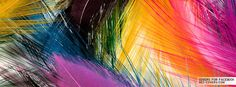 Colorful Feathers Facebook Covers   Timeline Covers