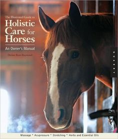 The Illustrated Guide to Holistic Care for Horses: An Owner's Manual by Denise Bean-Raymond