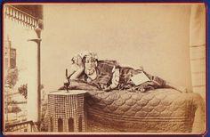 photo ethnic native Harem girl Tunis Tunisia Tunisie 1875