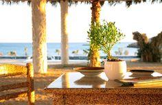 @EREGO Beach Bar and Restaurant is ready and rolling at Koubara beach! A MUST GO lounge of Ios.... Open daily from: 11:00am +30 697 540 3000 / info@erego.gr ☀️🌴😎🇬🇷😄🌊💙 #lifeonios #iosisland #visitgreece #greekislands #travelgram #cyclades #cyclades_islands #national_destination #ae_greece #WeLiveToExplore #sunset #beach #beachlife #wonderfulglobe #sunsets #erego #perfect_greece #eregorestaurant #eregobeachbar #summer2017 #nationaldestination #fodorsonthego #art #topsunsetshots…
