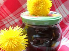 Pampeliškový med s přídavkem třtinového cukru Tiramisu, Kefir, Mason Jars, Food And Drink, Med, Creativity, Kitchen, Breads, Diet