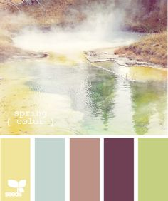 My scrap room is chocolate brown, white and apple green. I am thinking about recoloring the walls a light blue and keeping the brown/green accents. The colors would be similar to this pallette without the yellow or tan color.0