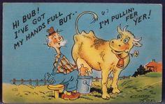 Comic Man Milks Cow Both Hands Full Pullin Fer Yer 1949 Craig Fox Linen Postcard Funny Cows, Winnie The Pooh, Disney Characters, Fictional Characters, Fox, Hands, Comics, Collection, Winnie The Pooh Ears