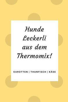 Teil 1 der Reihe: Hunde Leckerli aus dem Thermomix!
