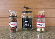 Pet Treat Container (s) reuse glass jars from your kitchen.