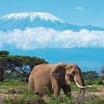 10 Most Visited Tourist Attractions in Tanzania
