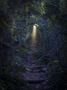 there is always a light at the end of a tunnel...So true