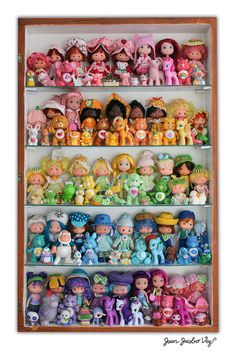 80's toys collection. Strawberry Shortcake, My Little Pony, Care bears...  Some of these are not from the 80's they are the modern remakes. However, this is a great pic!