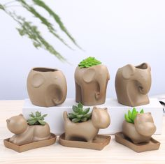 Buy Creative Small Flower Pots Coarse Pottery Flower Pot Elephant Succulents Planter at Wish - Shopping Made Fun Ceramic Planters, Ceramic Vase, Diy Clay, Clay Crafts, Succulent Pots, Succulents, Small Flower Pots, Flower Planters, Decoration Plante