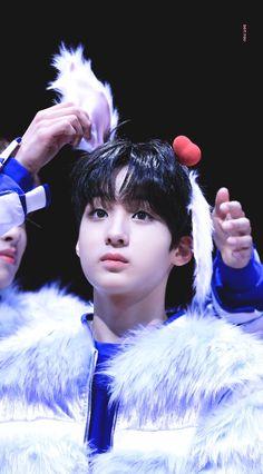 jiseong Ji Sung, Kpop Boy, Champion, Teen, Puppies, Wolf, Babies, Park, Babys