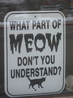 Cat talk - what part of Meow don't you understand? #quotes