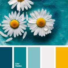 Delicate and fresh daisies. Dark blue, denim, turquoise, light blue harmonizes with white and yellow. This classic combination is suitable for a light summer image, and for formal business suit. Chamomile's colors on light blue color do not hurt your eyes and cause irritation.