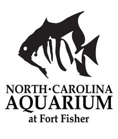 Join North Carolina Aquariums! It is cheaper to become members than to pay day membership and it also gets you in all other NC aquariums, the NC Zoo, and many other state supported aquariums and zoos!