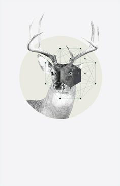 "A graphic design series called: ""Graphism"" by designer Jaime Romero. Illustration Design Graphique, Art Graphique, Illustration Art, Design Illustrations, Art Design, Blog Design, Deer Design, Design Ideas, Graphic Artwork"