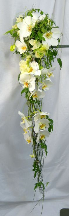 #White Bouquet Stunning bouquet—and not entirely inexpensive.  Phalaenopsis orchids, jasmine vine, and sisal wire.