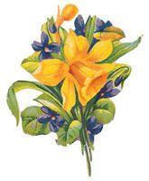 Flowers277