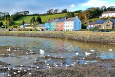 Beautiful Bantry Bay Co Cork Ireland  Loved it there.