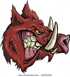 Boar Stock Photos, Images, & Pictures   Shutterstock