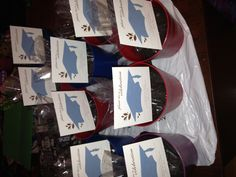 Seeds and planter favors to celebrate graduation