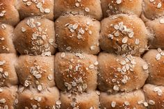This recipe for soft dinner rolls is made with all-purpose and whole-wheat flours, honey, milk, and butter.