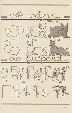 les animaux 52 by pilllpat (agence eureka), via Flickr