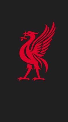 Liverpool F. Football Club Logo Graphic T Shirt - Supergraphictees Lfc Wallpaper, Liverpool Fc Wallpaper, Liverpool Wallpapers, Liverpool Fc Badge, Liverpool Football Club, This Is Anfield, Red Day, Fc Barcelona, Football Shirts