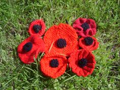 Knitted Poppy Pattern For British Legion : 1000+ images about knitted poppies on Pinterest Raise money, Poppies and Br...