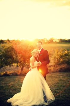 wedding photo + sunset + winery wedding