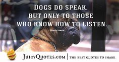 Quotes About Dogs - 33 Cute Dog Quotes, Best Quotes, Picture Quotes, Best Dogs, Cute Dogs, Dog Lovers, Love You, Sayings, Instagram