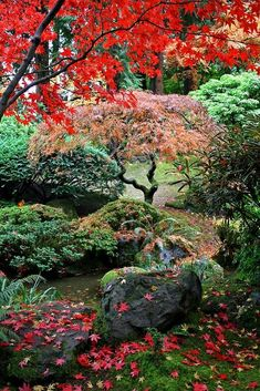 Gardening Autumn - Lovely mature example of a Japanese Garden. Photo,Autumn Garden Splendor, courtesy of www. ~EBM - With the arrival of rains and falling temperatures autumn is a perfect opportunity to make new plantations Modern Japanese Garden, Japanese Garden Landscape, Modern Garden Design, Garden Landscape Design, Japanese Gardens, Japanese Garden Backyard, Japan Garden, Contemporary Garden, Modern Design