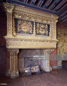 The fireplace with the salamander and the ermine in the Guards room, Chateau de Blois, Loire Valley (UNESCO World Heritage List, 2000). France, 16th century.