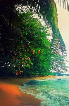 The beach - São Tomé island