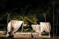 Wedding, beach, drape box, white, chiffon, palm trees