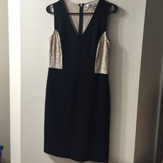 Dress Worn once, in excellent condition. DKNYC Dresses