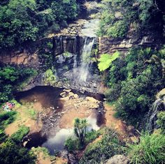Head to Mokoroa Falls when you're done with the city. | 16 Things You Didn't Know You Could Do In Auckland