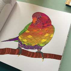 Quite pleased with my colouring creation! #MillieMarotta #AnimalKingdom #adultcoloring #colouringbookforadults #colouringiscool #bigkid #nofilter