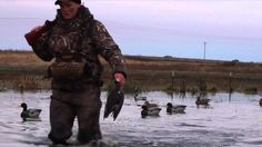 how to hunt duck
