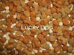 Help your dog get better nutrition and less additives by making your own homemade kibble dog food.