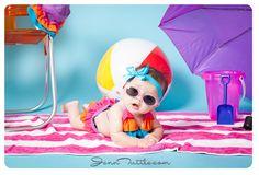 Dream: Southern California Baby Photographer » Jenn Tuttle [Loveographer]